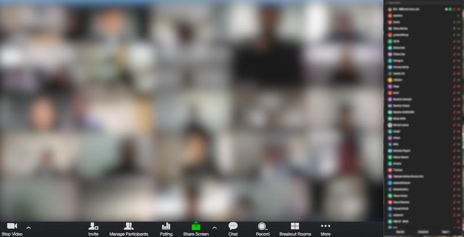 zoom screen